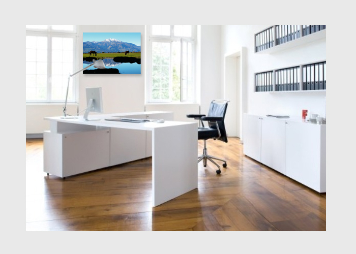 NZ-Kinloch-horses-on-canvas-office